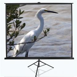 """Elite Screens Tripod Series T120NWV1 Diagonal 120 """", 4:3, Viewable screen width (W) 244 cm, White"""